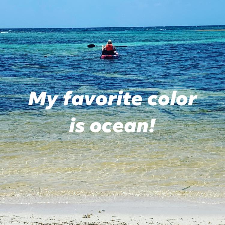 FavoriteColorOcean